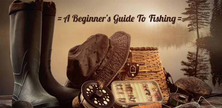 A Beginner's Guide To Fishing