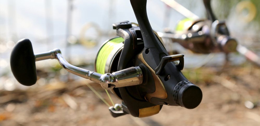 Best Freshwater Spinning Reel