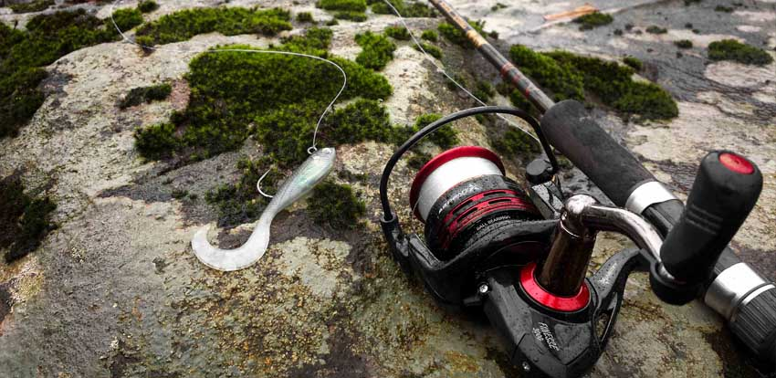 Buying Guide for the Best Spinning Reel
